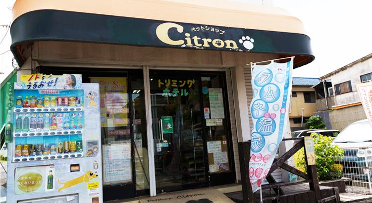 アットホームなペットショップ「Citron」