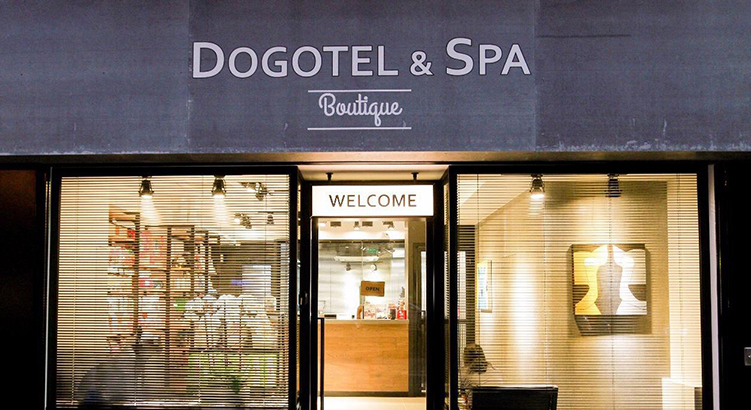 香港の富裕層向け高級サロン「Dogotel & Spa」
