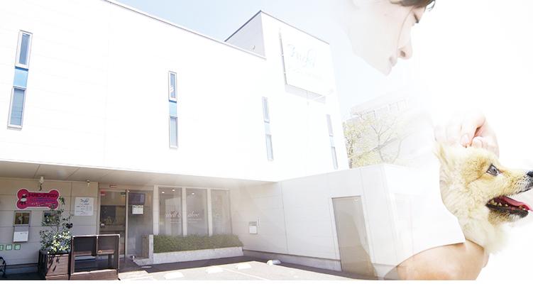 湘南でトータル・ヘルスケアをサポートするクリニック「アンジェス動物病院」