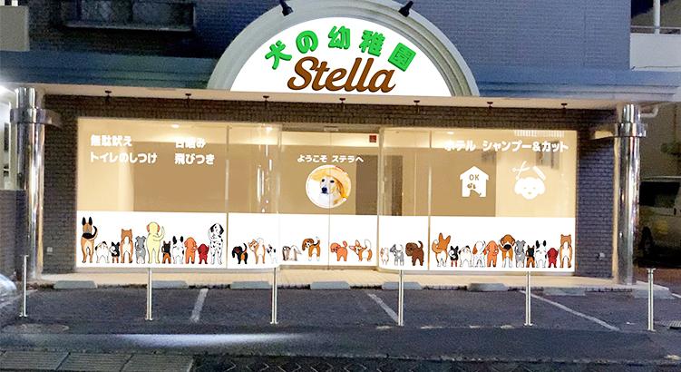 2020年4月オープン「犬の幼稚園 ステラ」