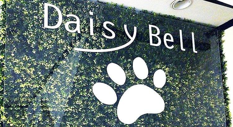 2020年2月OPENドックサロン「Daisy Bell」