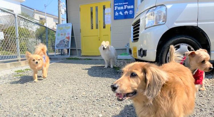 飼い主様が安心して愛犬を預けられるお店「Dog care house Fun Fun」