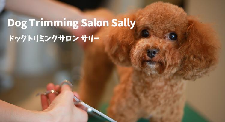 【オープニングスタッフ募集】駅徒歩2分&福利厚生完備の新規オープンサロン「Dog Trimming Salon Sally」